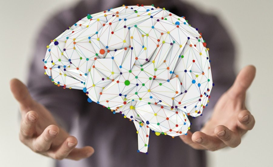 cognitive behavioural therapy wolverhampton - map of the brain