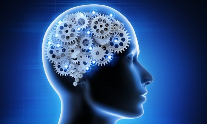 psychology - the study of the mind and behaviours - the mind as a set of cogs