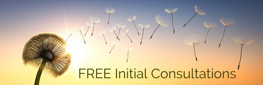 free initial consultations for fear of flying hypnosis banner